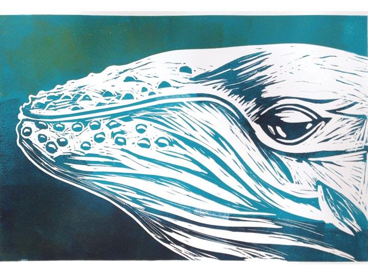 up close humpback portrait linocut