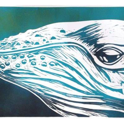 up close humpback portrait linocut