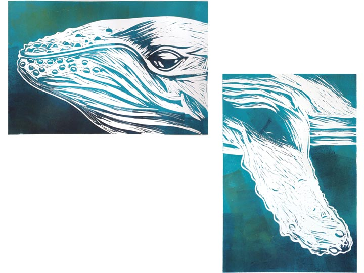 humpback whale face and fin diptych