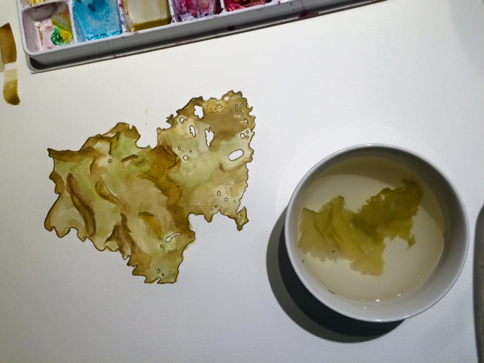 seaweed in bowl watercolour