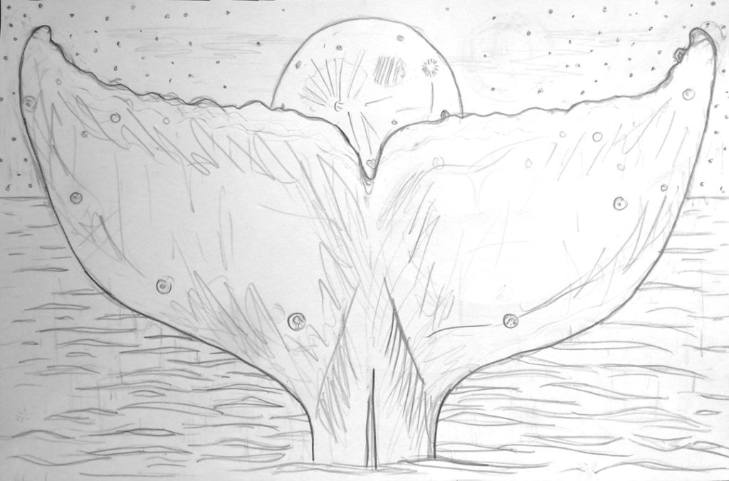 full moon whale tail art sketch